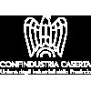logo confindustria caserta